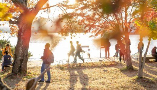 【作例】batis 40mm F2で撮る 河口湖紅葉まつり